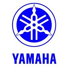 Kits Adhesivos Yamaha